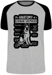 Camiseta Raglan Anatomia Pastor Alemão