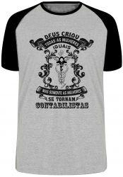 Camiseta Raglan Contabilista